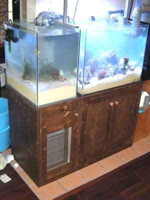 リトルパインのオーダー水槽台海水用