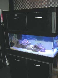 Aquarium_cabinet_p