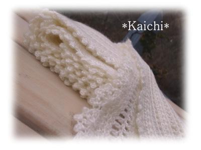 Kaichi31cc