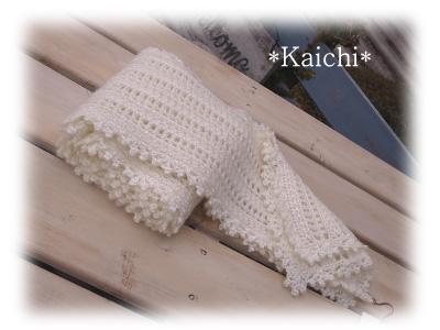 Kaichi31muffler