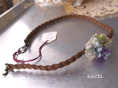 Kaichi34bb