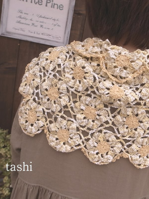 Tashi154cc_2