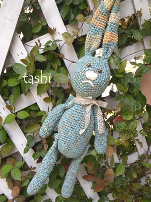 Tashi383